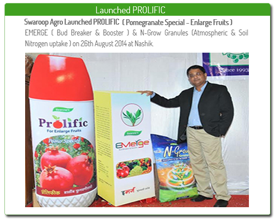 launched prolific